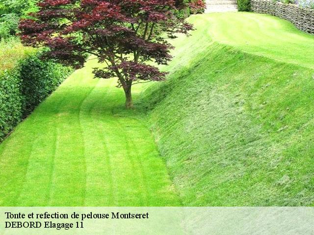 Tonte et refection de pelouse  montseret-11200 Soulaigre elagage 11